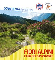FioriAlpiniOrchideeSpontanee
